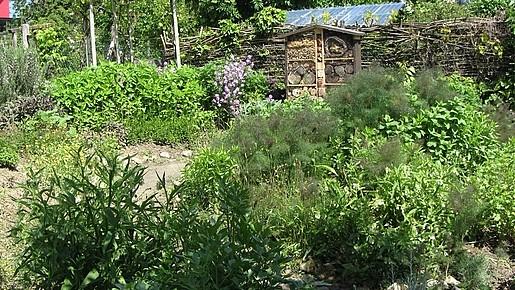 Duft und Kräutergarten mit Insektenhotel